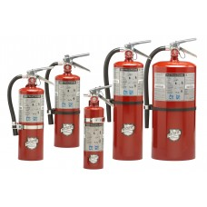 4305-4320 REGULAR BC PORTABLE FIRE EXTINGUISHER